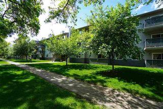 Photo 2: 110 10838 108 Street in Edmonton: Zone 08 Condo for sale : MLS®# E4231008