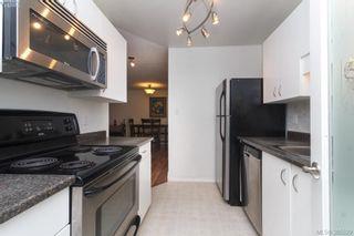 Photo 12: 104 3258 Alder St in VICTORIA: SE Quadra Condo for sale (Saanich East)  : MLS®# 774712