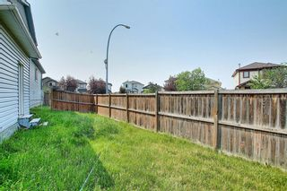 Photo 45: 102 Martin Crossing Grove NE in Calgary: Martindale Detached for sale : MLS®# A1130397