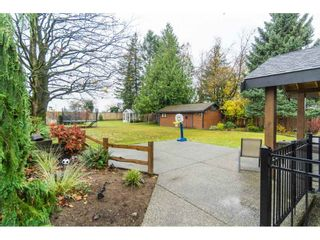 Photo 17: 32720 PANDORA Avenue in Abbotsford: Abbotsford West House for sale : MLS®# R2419567
