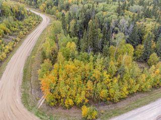 Photo 5: Lot 1 Birch Ridge Estates: Rural Bonnyville M.D. Rural Land/Vacant Lot for sale : MLS®# E4263512