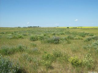 Photo 20: Eagle Creek Acreage 80 Acres in Asquith: Lot/Land for sale : MLS®# SK863384