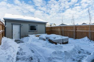 Photo 25: 86 Masters Crescent SE in Calgary: Mahogany Detached for sale : MLS®# A1071042
