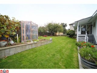 Photo 9: 2264 OTTER Street in Abbotsford: Abbotsford West House for sale : MLS®# F1025544