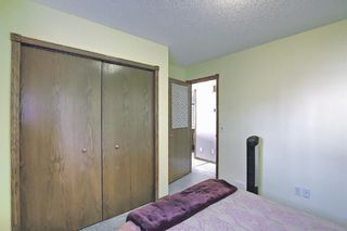 Photo 19: 52 Covington Court NE in Calgary: Coventry Hills Detached for sale : MLS®# A1078861