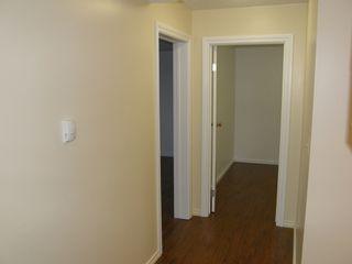 Photo 38: 20319 DEWDNEY TRUNK ROAD in MAPLE RIDGE: Home for sale : MLS®# V1044822