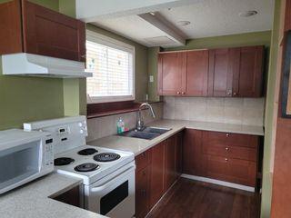 Photo 2: 4816 60 Street NE in Calgary: Temple Semi Detached for sale : MLS®# A1136864