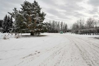 Photo 43: 192 QUESNELL Crescent in Edmonton: Zone 22 House for sale : MLS®# E4230395
