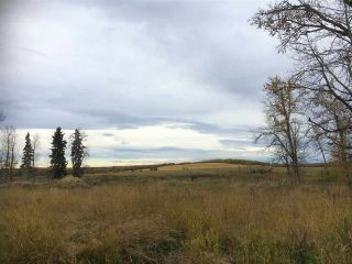 Photo 13: HWY 39 RR 34: Rural Leduc County Rural Land/Vacant Lot for sale : MLS®# E4235214