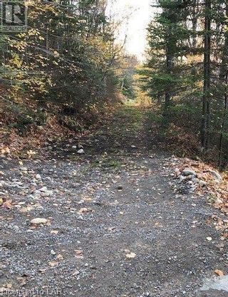 Photo 10: 11 PEACOCK EXTENSION Road in Sundridge: Vacant Land for sale : MLS®# 40127450