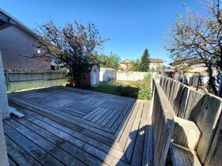 Photo 7: 39 Martinglen Way NE in Calgary: Martindale Detached for sale : MLS®# A1122060
