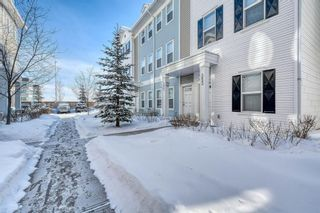 Photo 38: 353 Silverado Common in Calgary: Silverado Row/Townhouse for sale : MLS®# A1069067