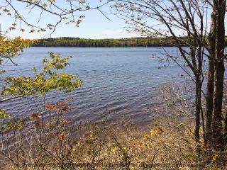 Photo 3: Lot 14 LACONIA Road in Laconia: 405-Lunenburg County Vacant Land for sale (South Shore)  : MLS®# 202106478