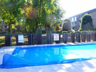 "Photo 22: 109 10631 NO. 3 Road in Richmond: Broadmoor Condo for sale in ""ADMIRAL WALK"" : MLS®# R2502949"