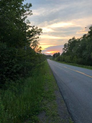Photo 13: River John Road in Sundridge: 108-Rural Pictou County Vacant Land for sale (Northern Region)  : MLS®# 202115166