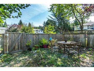 Photo 18: 12085 GEE STREET in Maple Ridge: East Central House for sale : MLS®# R2303678