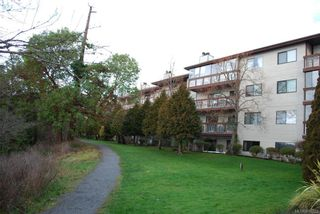 Photo 2: 101 79 W Gorge Rd in : SW Gorge Condo for sale (Saanich West)  : MLS®# 814822