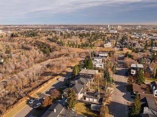 Photo 21: 313 33 Avenue SW in Calgary: Parkhill Detached for sale : MLS®# A1046049