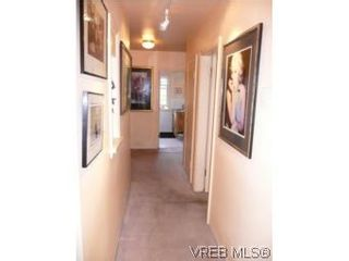 Photo 19: 1060 Bank St in VICTORIA: Vi Fairfield East House for sale (Victoria)  : MLS®# 515158