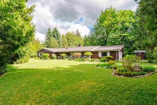Photo 1: 4848 246A Street in Langley: Salmon River House for sale : MLS®# R2530745