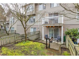 """Photo 37: 133 20033 70 Avenue in Langley: Willoughby Heights Townhouse for sale in """"Denim"""" : MLS®# R2560425"""