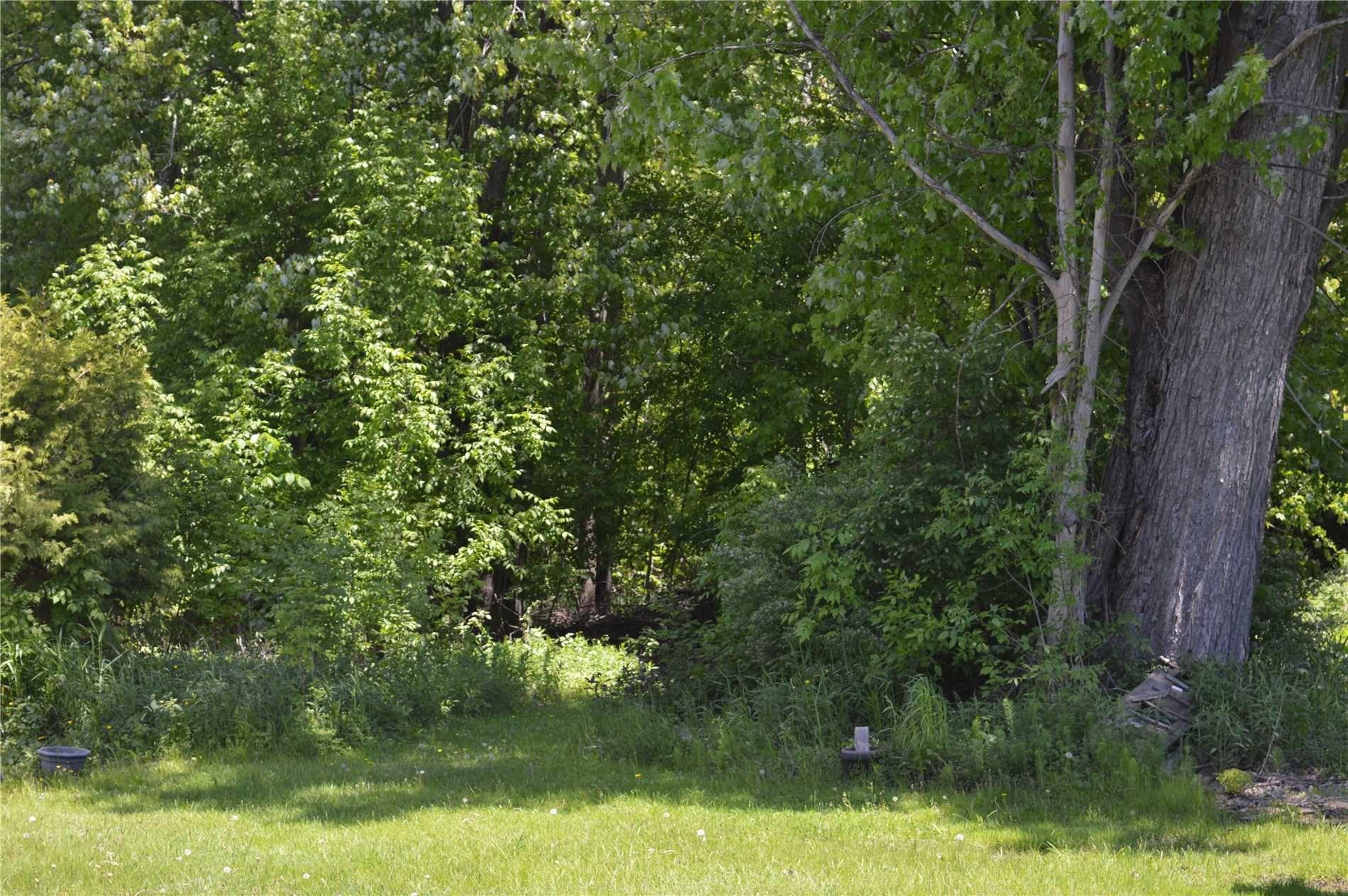 Main Photo: 2675 Lakeshore Drive in Ramara: Brechin Property for sale : MLS®# S4481993