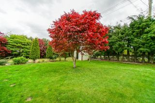 Photo 25: 5111 TOLMIE Road in Abbotsford: Sumas Prairie House for sale : MLS®# R2605990