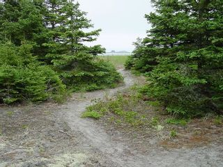 Photo 10: 0 Moshers Island Road in LaHave River: 405-Lunenburg County Vacant Land for sale (South Shore)  : MLS®# 202111805