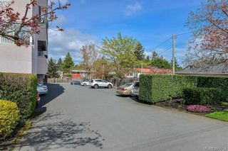 Photo 14: 101 1100 Union Rd in VICTORIA: SE Maplewood Condo for sale (Saanich East)  : MLS®# 784395