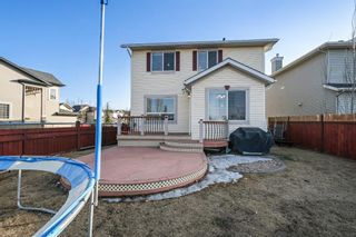 Photo 33: 143 Chapman Circle SE in Calgary: Chaparral Detached for sale : MLS®# A1091660
