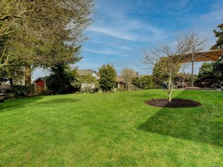Photo 20: 6599 Roza Vista Pl in : CS Tanner House for sale (Central Saanich)  : MLS®# 870841