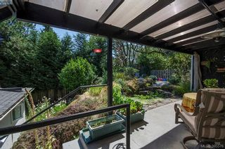 Photo 37: 4035 Saanich Rd in VICTORIA: SE High Quadra House for sale (Saanich East)  : MLS®# 793152