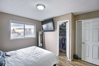 Photo 22: 813 Applewood Drive SE in Calgary: Applewood Park Detached for sale : MLS®# A1076322