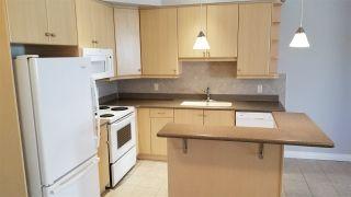 Photo 7: 313 10116 80 Avenue in Edmonton: Zone 17 Condo for sale : MLS®# E4229427