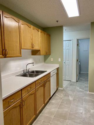 Photo 12: 203 17511 98A Avenue in Edmonton: Zone 20 Condo for sale : MLS®# E4224086