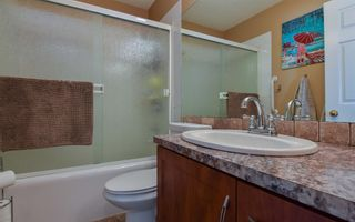 Photo 22: 19 Coral Springs Green NE in Calgary: Coral Springs Detached for sale : MLS®# A1064620