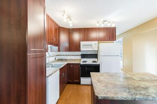 Photo 12: 1396 Berkley Drive NW in Calgary: Beddington Heights Detached for sale : MLS®# A1146766