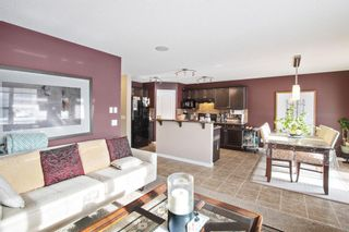 Photo 11: 12 Skyview Springs Crescent NE in Calgary: Skyview Ranch Detached for sale : MLS®# A1067284