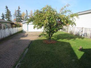 Photo 19: 17436 96 Street in Edmonton: House for rent