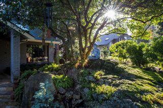 Photo 3: 4147 Cedar Hill Rd in : SE Cedar Hill House for sale (Saanich East)  : MLS®# 867552
