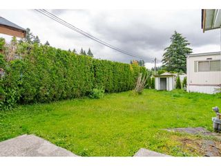 """Photo 20: 3 4426 232 Street in Langley: Salmon River Manufactured Home for sale in """"WESTFIELD COURT"""" : MLS®# R2479123"""