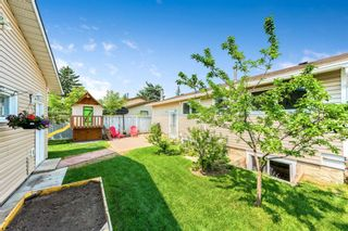 Photo 22: 1051 Pinecliff Drive NE in Calgary: Pineridge Detached for sale : MLS®# A1131055