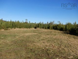 Photo 4: 40+/- acres Old Pictou Road in Hedgeville: 108-Rural Pictou County Vacant Land for sale (Northern Region)  : MLS®# 202125401