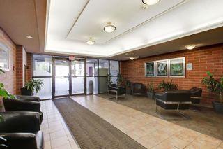 Photo 5: 802 9917 110 Street NW in Edmonton: Zone 12 Condo for sale : MLS®# E4258804