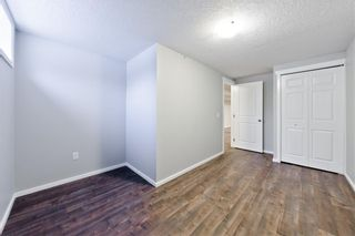 Photo 23: 100 DOVERVIEW Place SE in Calgary: Dover Detached for sale : MLS®# A1024220