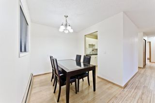 Photo 7: 101 123 22 Avenue NE in Calgary: Tuxedo Park Apartment for sale : MLS®# A1091219