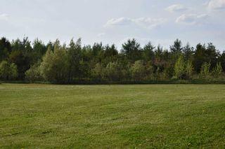 Photo 27: 555142 Mono-Amaranth Town Line in Amaranth: Rural Amaranth House (Bungalow) for sale : MLS®# X5245502
