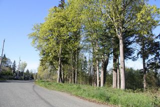 Photo 8: LT 1 Tappin St in : CV Union Bay/Fanny Bay Land for sale (Comox Valley)  : MLS®# 858577