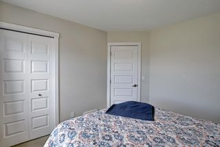 Photo 29: 3803 1001 8 Street: Airdrie Row/Townhouse for sale : MLS®# A1105310