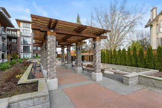 """Photo 26: 205 12460 191 Street in Pitt Meadows: Mid Meadows Condo for sale in """"Orion"""" : MLS®# R2603760"""
